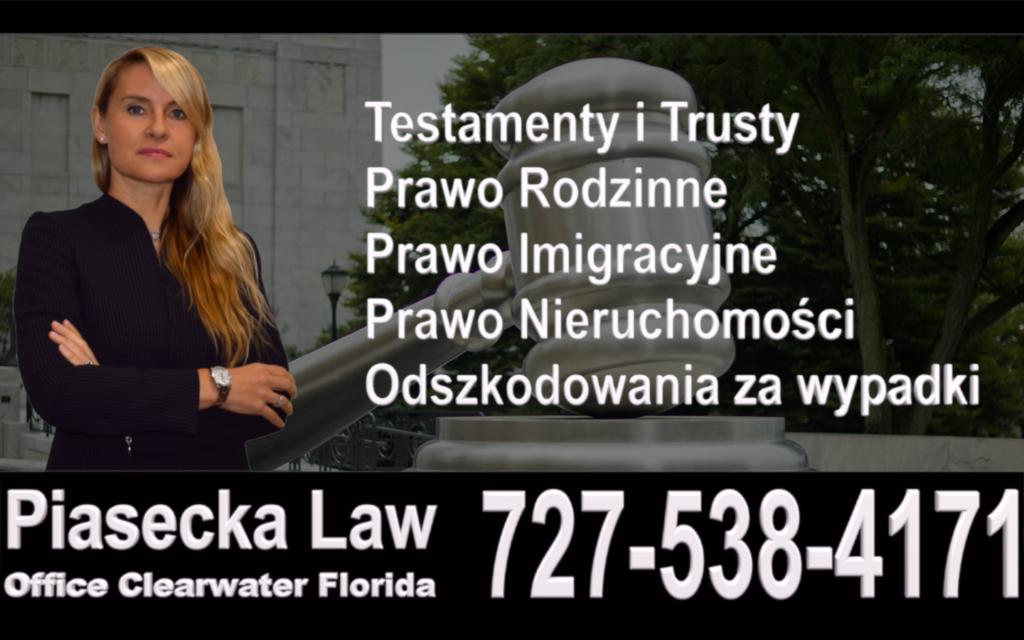 Clearwater, Piasecka, Polish, Attorney, Lawyer, Florida, USA, Polski, Prawnik, Adwokat, Floryda, Agnieszka Piasecka, Aga Piasecka