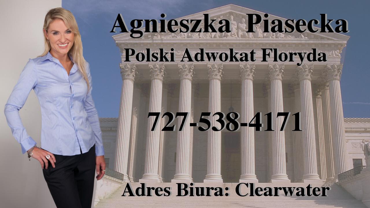 Polscy Prawnicy - Clearwater, Floryda